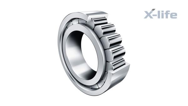 Rodamientos y casquillos de fricción Schaeffler: Rodamientos de rodillos cilíndricos sin jaula