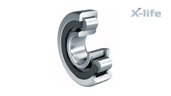 Rodamientos y casquillos de fricción Schaeffler: Rodamientos de rodillos cilíndricos con jaula